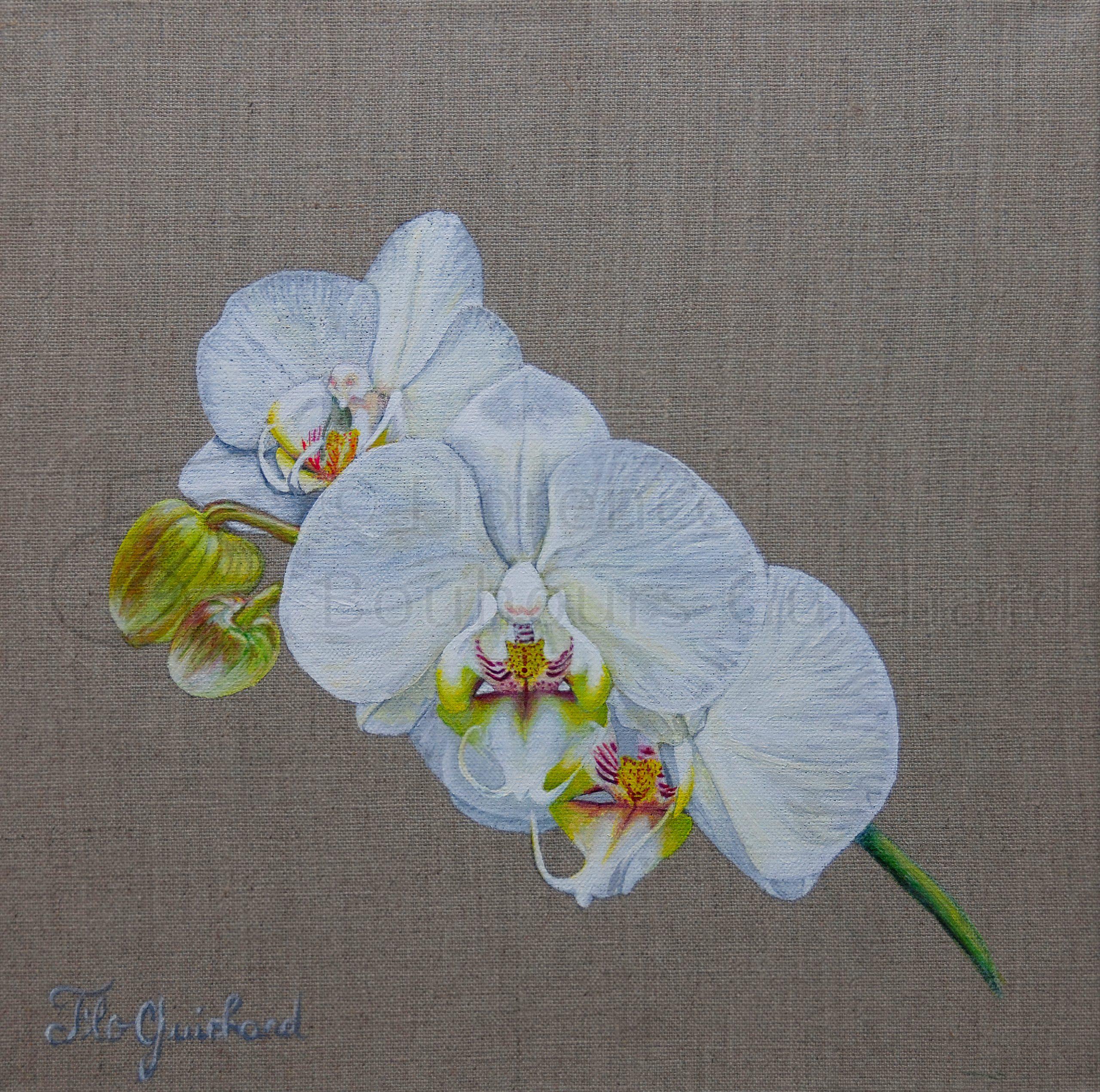 « Amour pur » acrylique sur toile de lin naturelle – 30X30 cm
