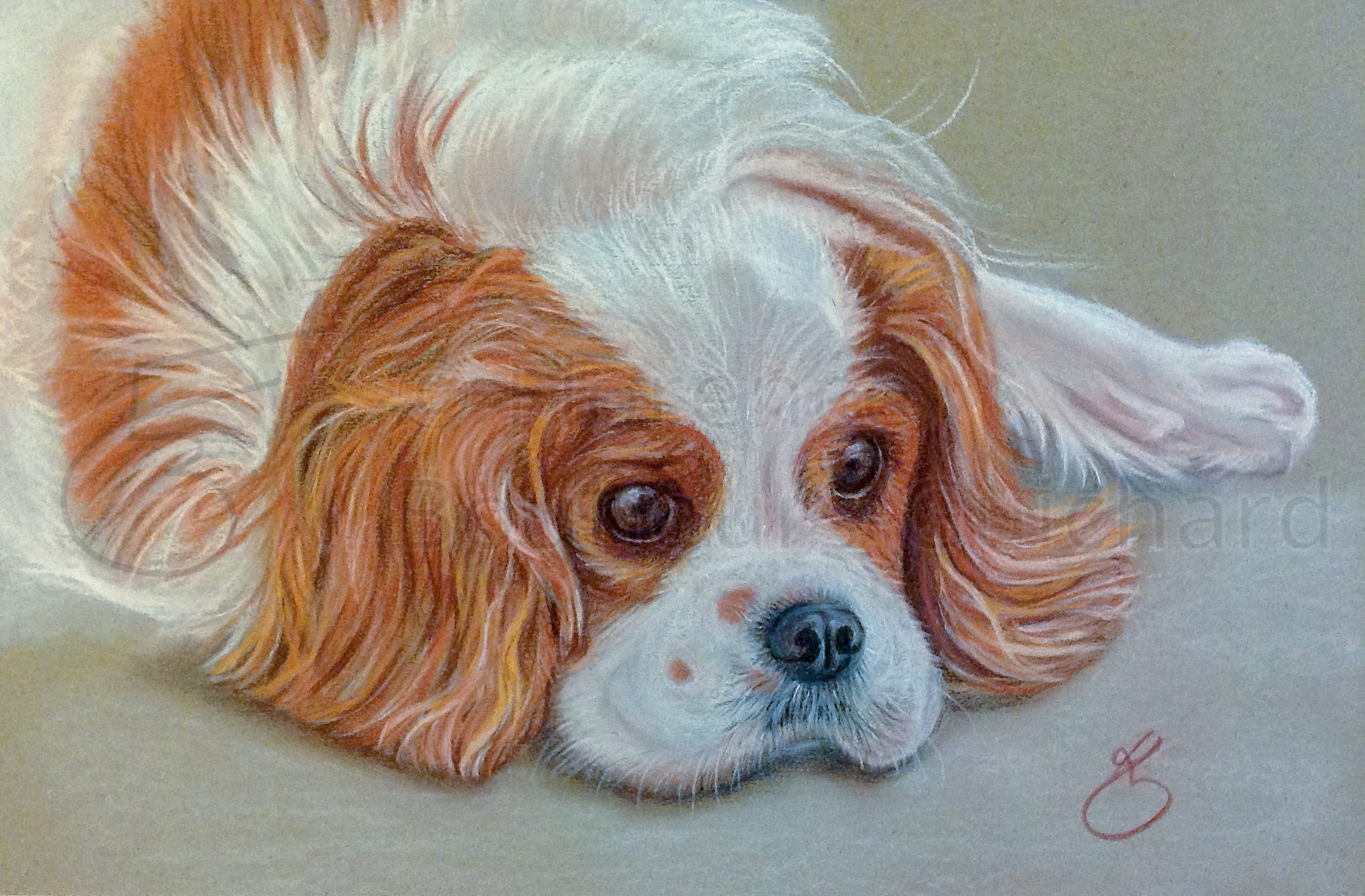 « Beauty pensive » sanguine et pastel sur papier – 25X35 cm