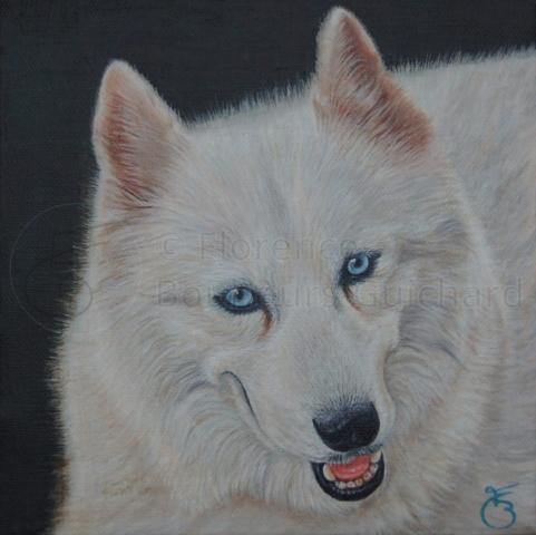 « Chilla, la belle » acrylique sur toile – 20X20 cm