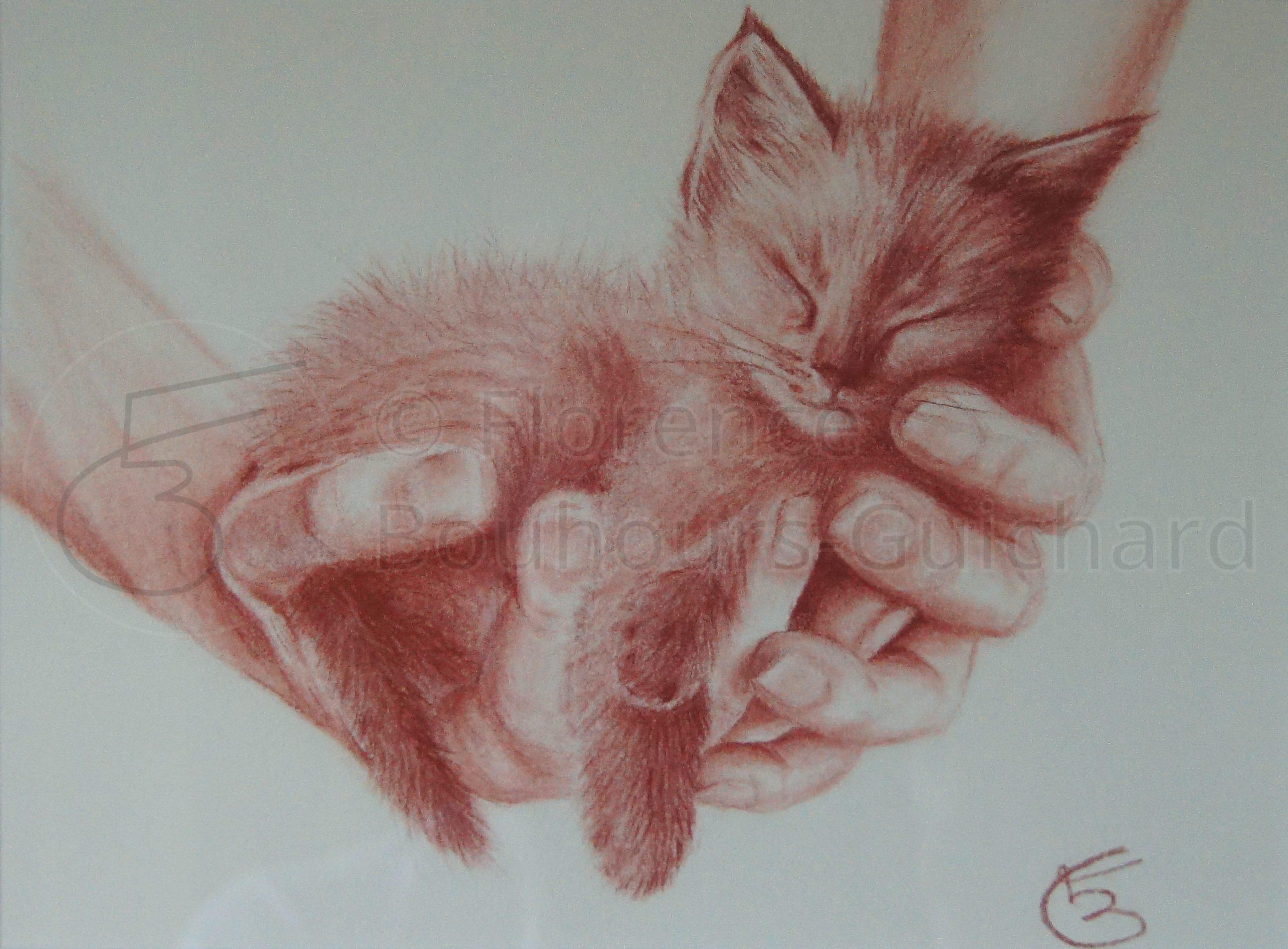 « Chut ! chaton dort » Sanguine sur papier – 24X30 cm