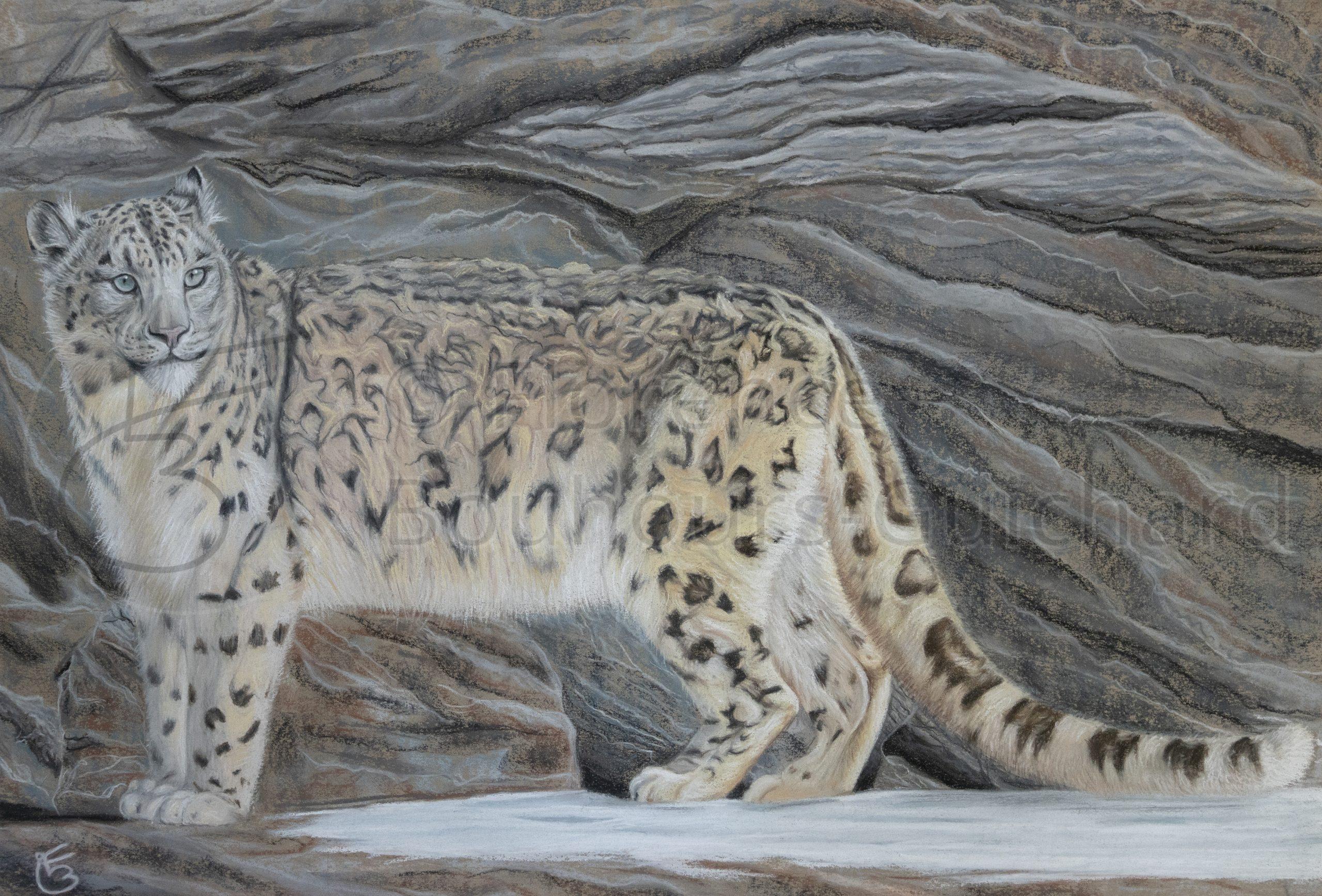 « Cristal de roche » pastel sec sur papier – 40X60 cm