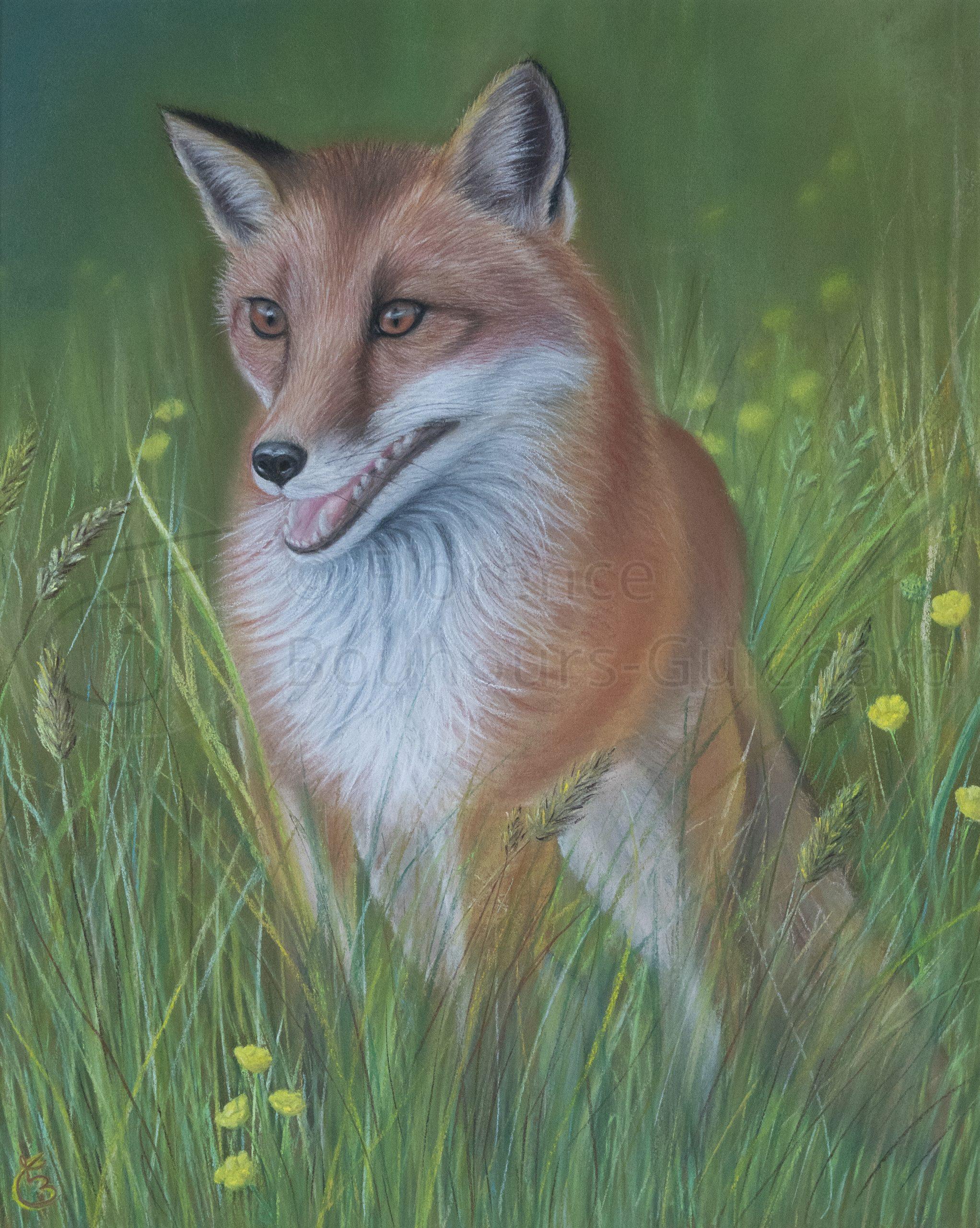 « Dans l'herbe fraiche » pastel sec sur papier 40×60 cm
