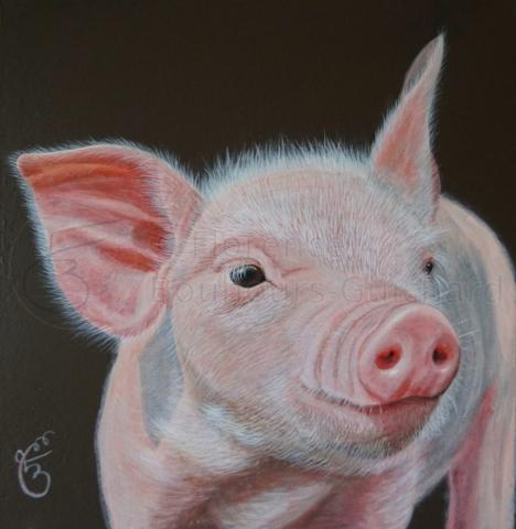 « De l'Art ou du cochon » acrylique sur médium – 20X20 cm