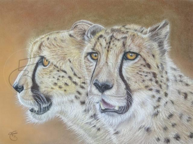« Frères jumeaux » pastel sec sur papier 40×50 cm