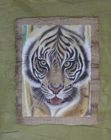 « Les yeux de la jungle » pastel sec sur papier 20×30 cm