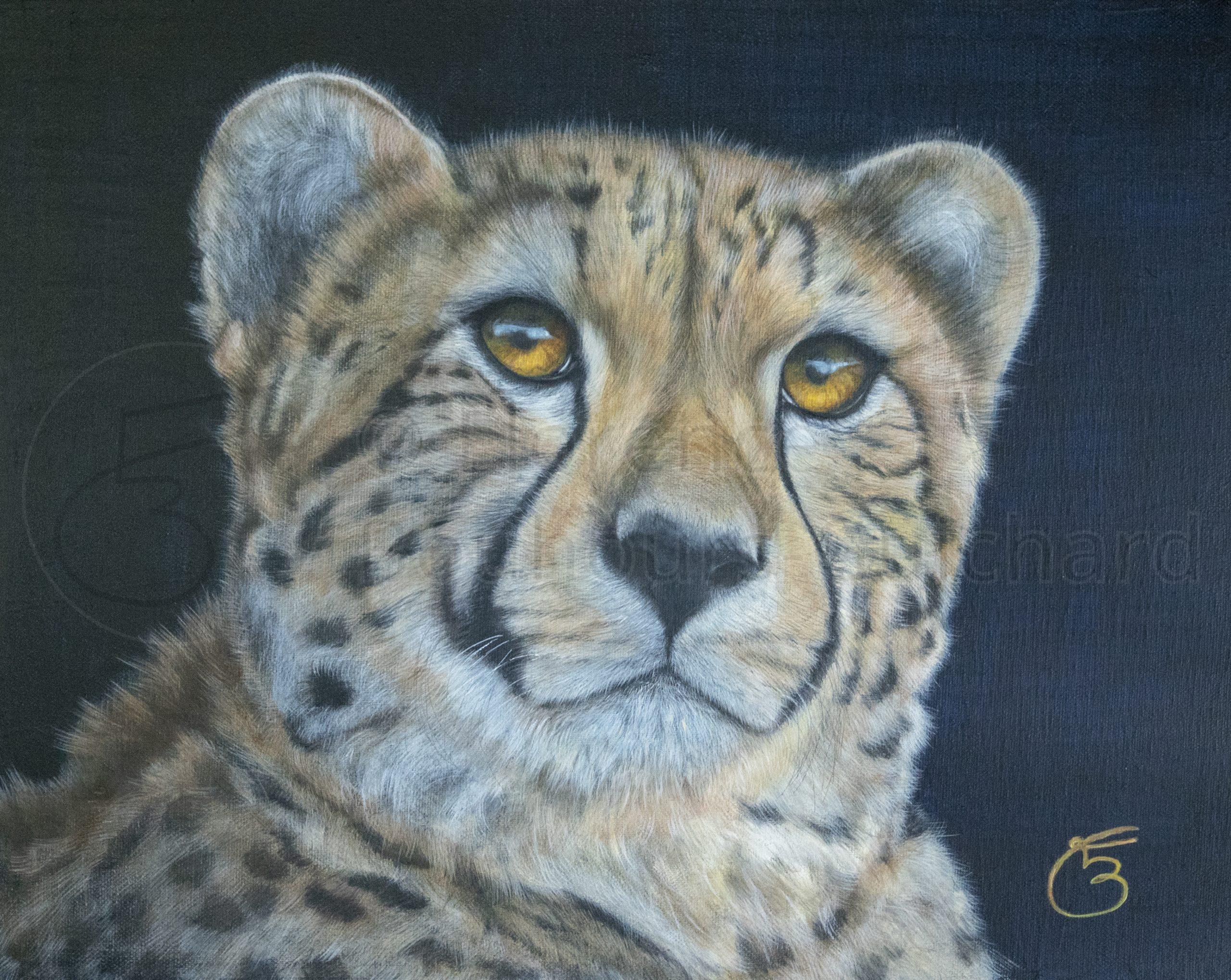« Naïra, une pensée pour Jack » acrylique sur toile 40×50 cm
