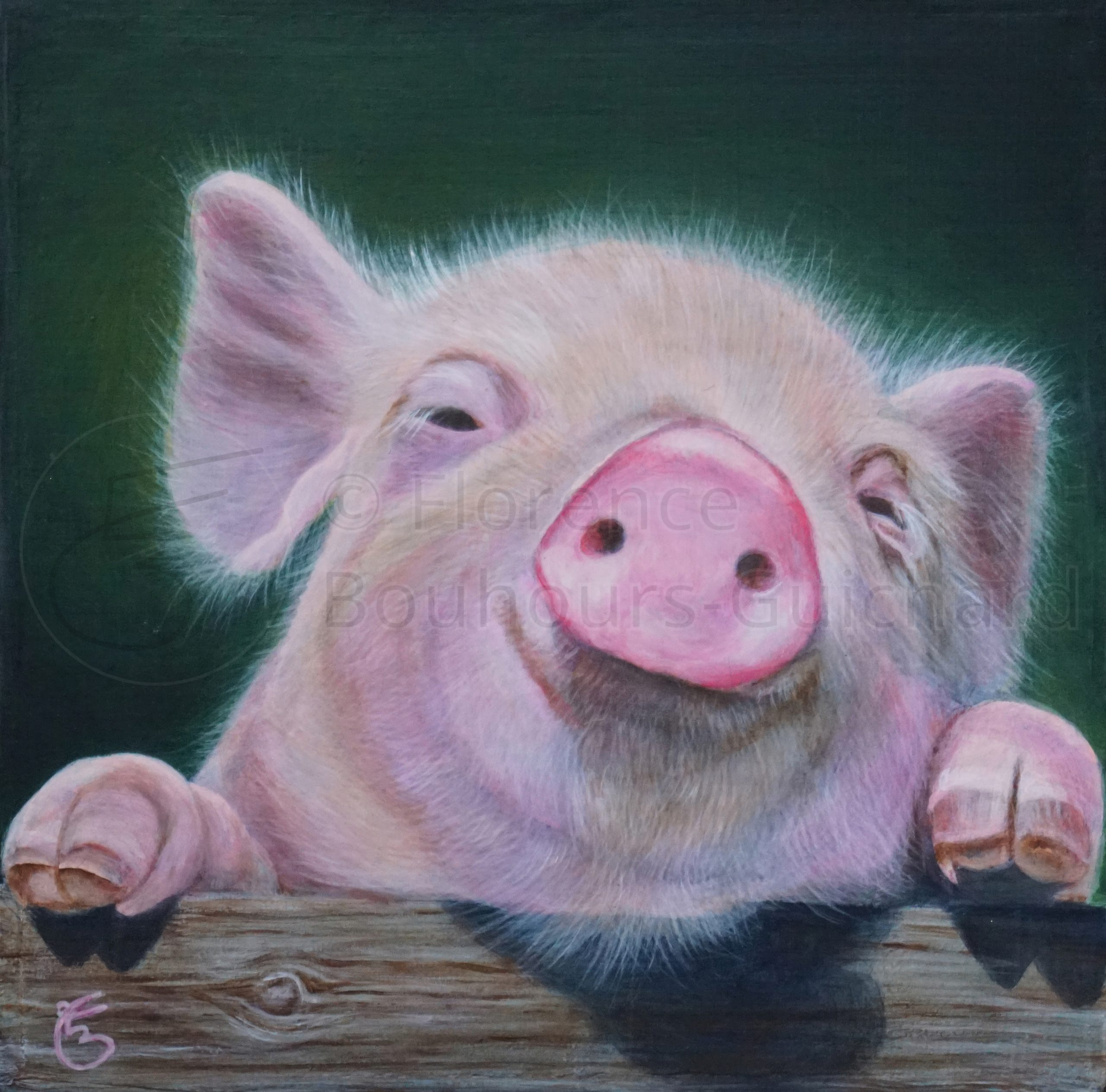 « Porc épique » acrylique sur médium 20×20 cm
