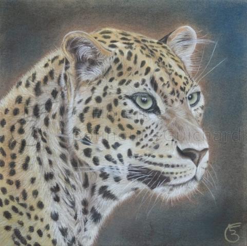 « Regard sur le monde » pastel sec sur papier 40×40 cm