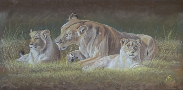 « Tendresse maternelle » pastel sec sur papier – 51×101 cm